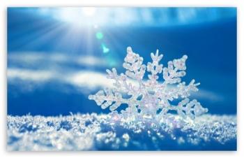 Дві сніжинки